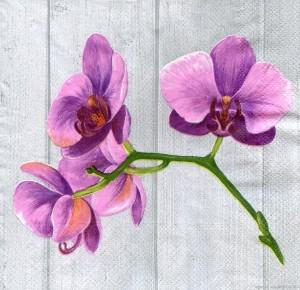 Аметистовая орхидея, 33х33 см - Заготовки для декупажа. Интернет-магазин Завиток
