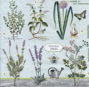 Ботаника, 33х33 см,  салфетка для декупажа - Заготовки для декупажа. Интернет-магазин Завиток